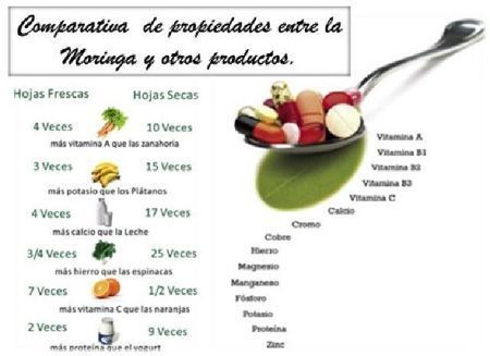 beneficios moringa