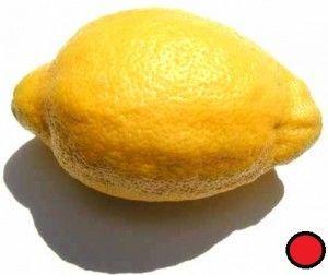 Características del limón